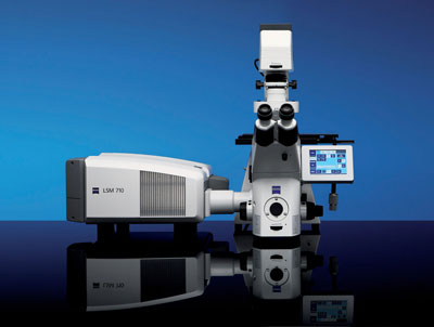Carl Zeiss LSM 710 microscope system