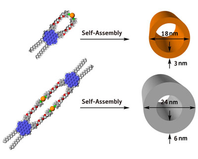 Two examples of nanotubular assemblies fabricated from single hexabenzocoronene amphiphile building blocks (blue/grey/red spheres) and platinum (Pt) metal ions (orange spheres)