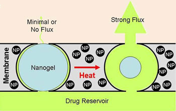 Applying an oscillating magnetic field causes the nanoparticles to heat up and the nanogel to collapse, creating a pathway for the drug to move from the reservoir out of the membrane