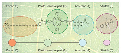 Emulating natural photosynthesis