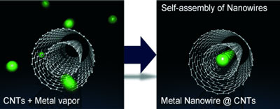 Stable metal nanowires one atom wide inside carbon nanotubes