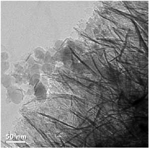 The NanoCeram water filter�s nanoalumina fibers are shown here capturing fumed silica particles of a similar size to viruses