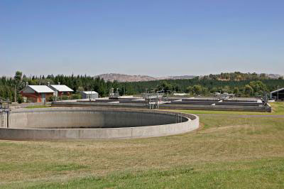 Sewage treatment plants serve as the main gateway for nanoparticles to enter the environment.
