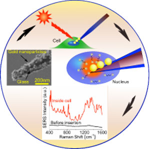 nanopipette for cell diagnostics