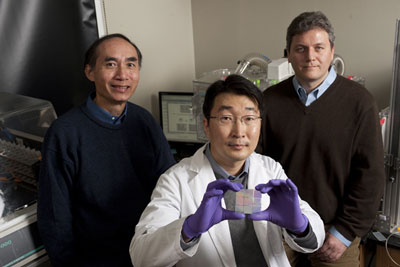 Leslie Tung, left, and Andre Levchenko, right, both of the Department of Biomedical Engineering, with Deok-Ho Kim, a doctoral student in Levchenko�s lab