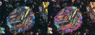 Bar olivine chondrule in the Coolidge meteorite in transmitted-light
