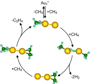 Catalytic dimers of gold atoms make ethylene from methane