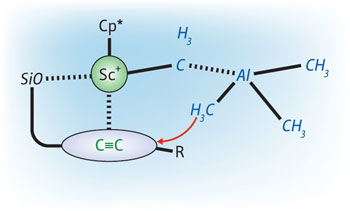 Figure 1: The interaction between a scandium-based catalyst (Sc+�Cp*) and a silyl ether group (SiO) allows the highly selective addition of methylaluminum (blue structure) to carbon�carbon triple bonds