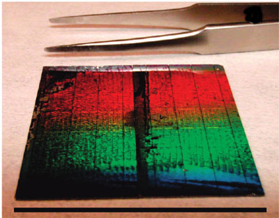This photovoltaic cell is comprised of 36 individual arrays of silicon nanowires featuring radial p-n junctions