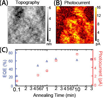 Microscopic heterogeneity in (A) topography and (B) photocurrent on P3HT/PCBM blends