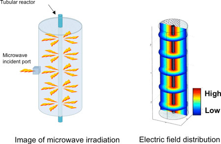 Electric field distribution of the TM010 mode in a cylindrical space