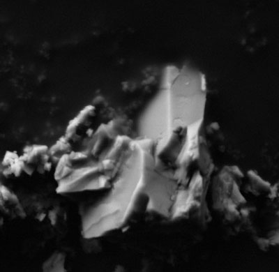 Carbonate crystals, doped with gold nanoparticles SEM Image