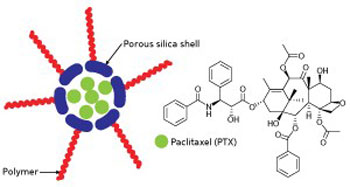 Schematic representation of a polymer-modified silica vesicle (left) for the delivery of the potent anti-cancer drug paclitaxel (PTX)