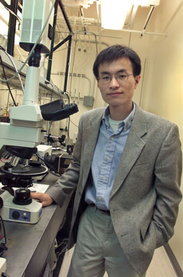 Peidong Yang, a chemist with Berkeley Lab and UC Berkeley, will lead the Berkeley component of the Joint Center for Artificial Photosynthesis, a new Energy Innovation Hub created by the U.S. Department of Energy