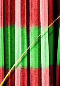 A side view of a forest of bicolor nanoneedles. A central low porosity segment is green and two siding high porosity segments are red. An ultrathin porous wire crosses the picture sideways, in yellow