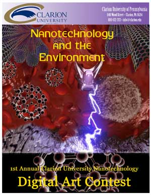 Nanotechnology and the Environment for High School Students
