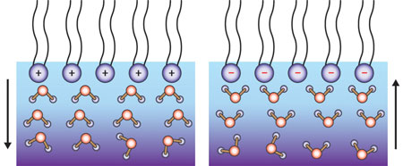 when the air–water interface is positively charged (top left), the water molecules (bottom) will orientate  'hydrogen-down' (left), and when it is negatively charged they are 'hydrogen-up' (right)