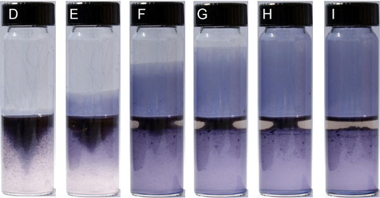 Sequence of images illustrating growth of polymer film in tubes over 35 seconds