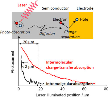 Diffusion and charge-separation characteristics of photo-generated excitons