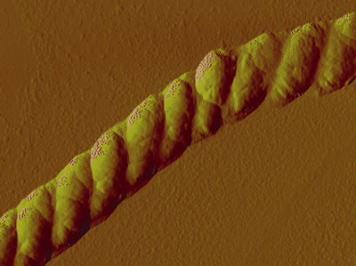 An atomic force microscopy image of the nanoscale rope shown at a resolution of one-millionth of a meter