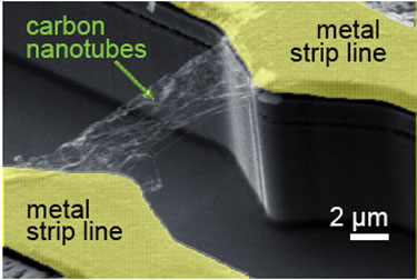 A carbon nanotube network is contacted by two metal strip lines