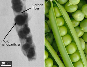 Cobalt oxide nanoparticles embedded in carbon fibers (left) to form peapod-like structures improve the lifetime of electrodes in lithium-ion batteries.