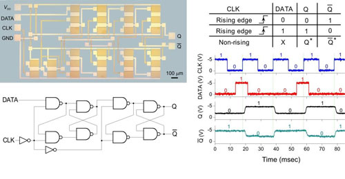 Carbon nanotube-based logic integrated circuits on a plastic substrate