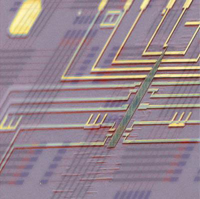 This is a false-color scanning electron microscopy image of a programmable nanowire nanoprocessor super-imposed on a schematic nanoprocessor circuit architecture