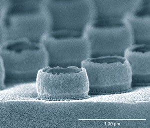 A micrograph of a completed gold double-nanopillar array