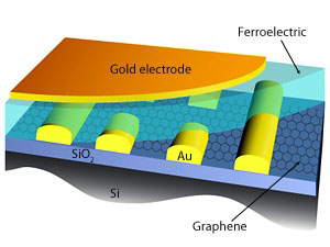 Schematic illustration of an improved graphene–ferroelectric FET with SiO2 basal layer