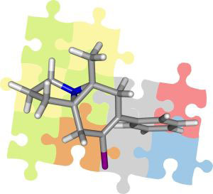 Solved puzzle: By means of residual bipolar couplings, structures of organic molecules can be identified