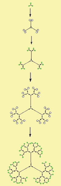 Scheme for synthesizing dendrimers