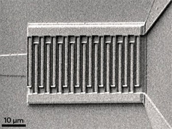 Scanning electron microscopy image of the germanium�silicon-based photodetector with metal contacts to induce plasmonic light enhancement