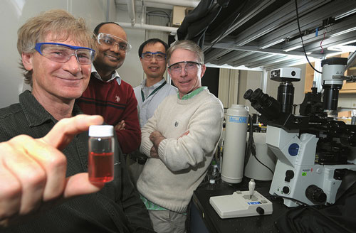 John Bahns, Subramanian Sankaranarayanan, Liaohai Chen and Stephen Gray find new way to assemble nanoparticles.