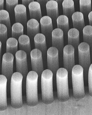 These posts, made of carbon nanotubes, can trap cancer cells and other tiny objects as they flow through a microfluidic device