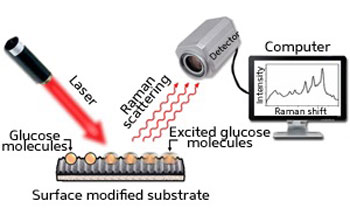 Schematic diagram showing how glucose molecules are detected by SERS using a nanogap substrate