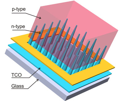 Nanocone-based solar cell consisting of n-type nanocones, p-type matrix, transparent conductive oxide (TCO) and glass substrate