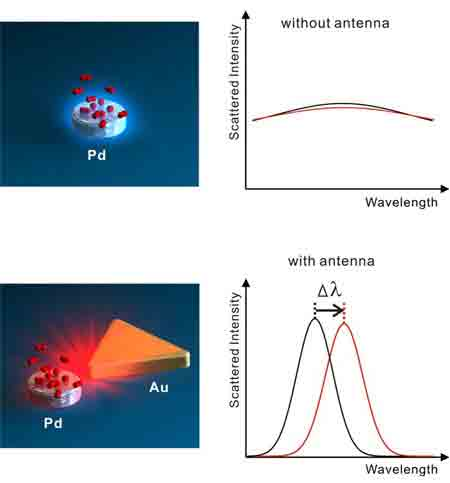 gold antenna enhancing light scattering