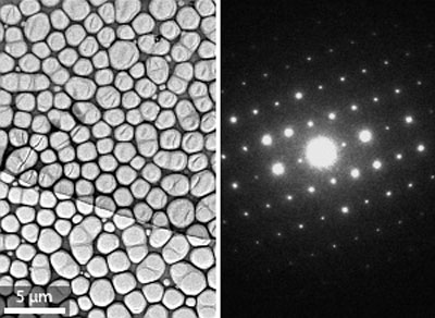 Transmission electron microscopy image of the two-dimensional organic crystal (left), and the corresponding selected-area electron diffraction image