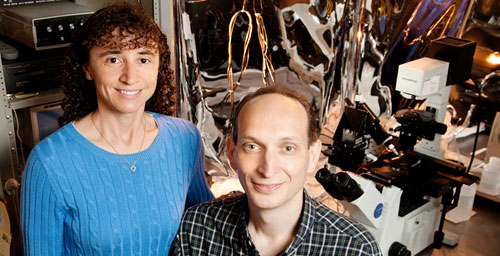 Illinois professor Claudio Grosman and research scientist Gisela Cymes