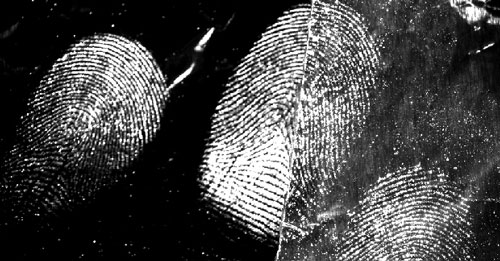 Latent fingermarks from a male donor developed on aluminium foil