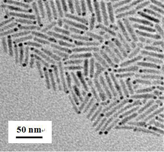 Metal-semiconductor 'matchstick-like' structures viewed under high-powered transmission electron microscopy.