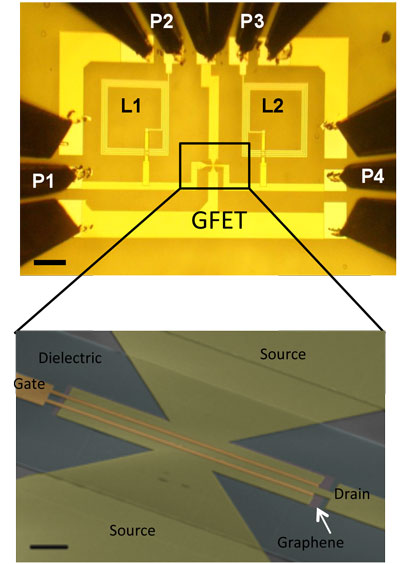 Optical image of a completed graphene integrated circuit