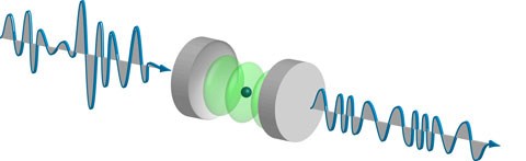 A single rubidium atom in a cavity squeezes the quantum fluctuations of a weak laser beam, decreasing the fluctuations of the amplitude at the expense of the phase