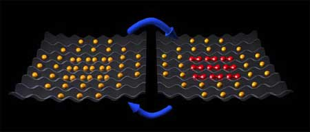 Atoms and molecules in a lattice made of light: