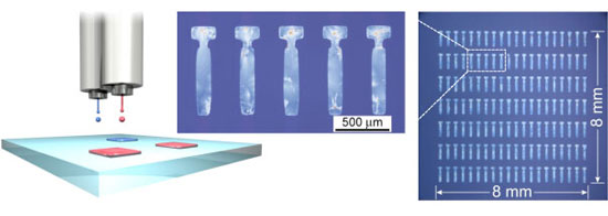 Single-crystal thin films of organic semiconductors formed at respective positions by a new inkjet printing technique