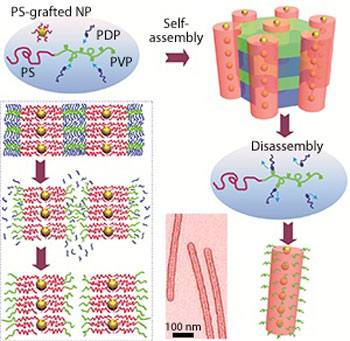 Supramolecules formed from polystyrene (PS), poly(4-vinylpyridine) (PVP) and pentadecylphenol (PDP)
