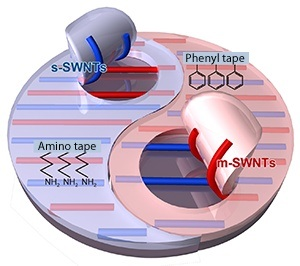 A schematic illustration of the separation of single-walled CNTs using amino- and phenyl-modified PDMS scotch tape