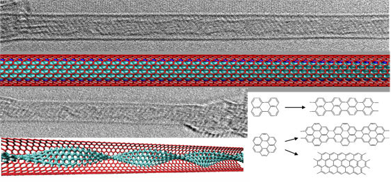 graphene nanoribbons encapsulated in single-walled carbon nanotube