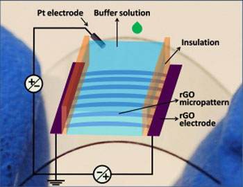 Graphene thin film transistors cutting down costs schematic illustration of an all reduced graphene oxide thin film transistors device publicscrutiny Gallery